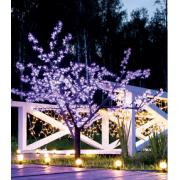 Светодиодные деревья в Гомеле